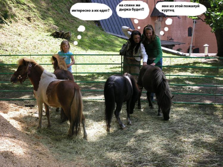 «Моя Маленькая Пони 3 Сезон» — 2007